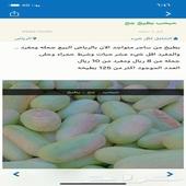 الرياض - بيع جمله مثل ماهو