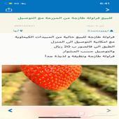 فراولة قطفة اليوم طازجة و عضوية