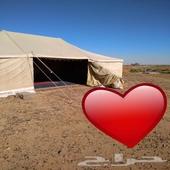خيمة الخالدية 9 5