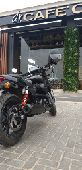 Harley street rod 750 للبيع