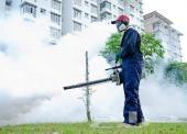 شركه تنظيف بجازان ومكافحه حشرات  0509135359