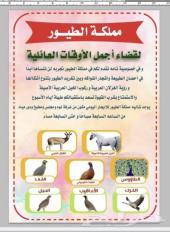 مملكة الطيور والخيل العربية