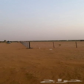 ارض زراعية