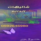 استراحه وشاليهات الدانه مكه الجعرانه مقابل محطة المسافر
