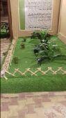 تنسيق حدائق وعشب صناعي وتيل طبيعي وشلالات واش
