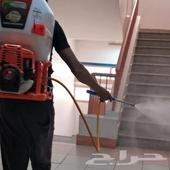شركة رش حشرات بالمدينة المنورة