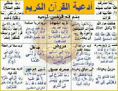 سايق يوجد رخصة قيادة يمني
