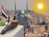 سياحة 4 و 5 نجوم بالقاهرة