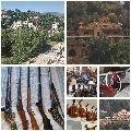 قصر التحف والانتيك والكلاسيك لبنان للبيع