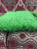 العشب الصناعى والملاعب الرياضيه والحدائق والا