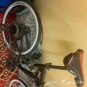 دراجة سباق رود