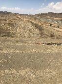 ارض للبيع مساحه 62 الف متر مربع بصك