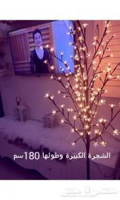 عرض خاص الشجرة المضيئة 179