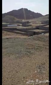 ارض للبيع للبدل بهايلوكس دبل
