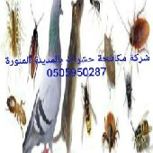 شركة رش حشرات بالمدينة 0504950287