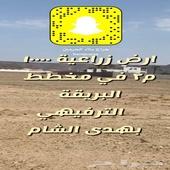 حراج بلاد الحرمين