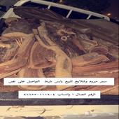 فاكه الشتاء سمر طايفي شلايخ وربطات