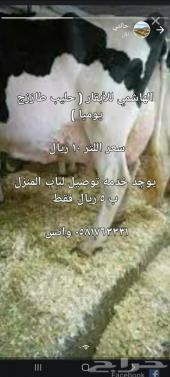 حليب أبقار طازج ( يوميا ) مع التوصيل