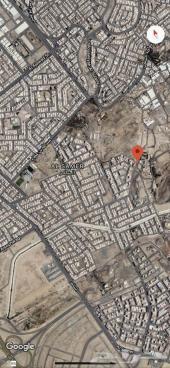 ثلاث ارضي للبيع في حي السامر