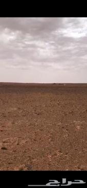 أرض زراعية للبيع في حقروصين مخطط النهظة