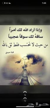 شاص 10- 11-12-13 سعودي 11 ريشه