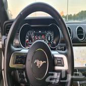 موستنج GT CS 2019 - السعر 165 ألف