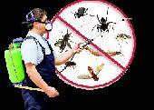 شركة رزان لغسيل الخزنات ورش الحشرات