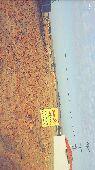 ارض للبيع في المشاعله غرب الرياض