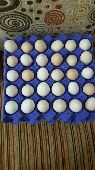 بيض بلدي للبيع
