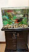حوض سمك تفصيل للبيع