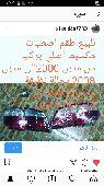الشرقيه -   طقم اصلي اصطياد