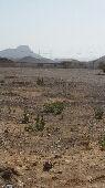 قطع أراضي   ابيار الماشي
