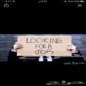 محتاج وظيفة