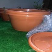 احواض واركان زرع