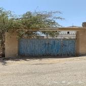 بيت شعبي للايجار او البيع