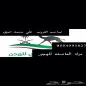 مزاد هجن 0554993827