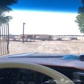 موقع مميز للايجار مخيمات شتويه في الجبيل
