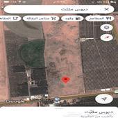 ارض زراعية في محافظة البكيرية موقعها ممتاز جدا  للبيع