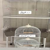 قفص طيور استعمال نظيف جدا