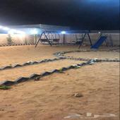 مخيم للايجار اليومي عروض خاصه بمناسبة الافتتاح