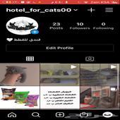 فندق للقطط وترويش وبيع رمل اللتر بوكس
