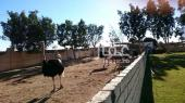 مزرعة للبيع في حي الملك عبدالعزيز في الرياض