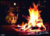حطب وفحم مستورد وستاند مع التوصيل