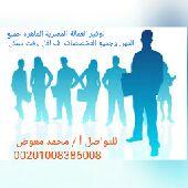 عمالة مصرية جميع المهن