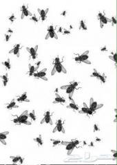 رش حشرات نمل ابيض فئران صراصير بق جردان نامس