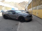 Custom Show Mustang
