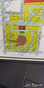 للبيع ارض بمخطط 294 - 2 حرف ب 780 م فرصه