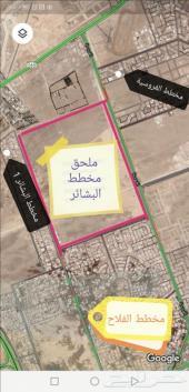 أراضي في ملحق مخطط البشاير الجديد