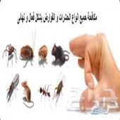 شركة رش مبيدات شركه مكافحة حشرات بتبوك السعر