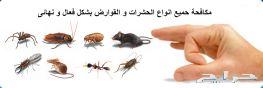 مكافحة حشرات رش مبيدات بجده السعر